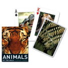 Cartas Baraja Poker Animales - Baraja 55 cartas