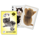 Cartas Baraja Poker Gatitos - Baraja 55 cartas